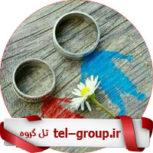 گروه بحث سیاسی تلگرام