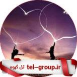 گروه دورهمی ایران