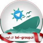 گروه بوشهری ها