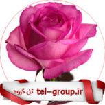 تهران تلگرام