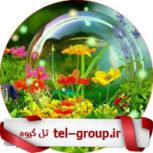 گروه چت دختر و پسرای تهرانی
